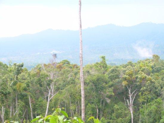 The scenery around the waterfall area Lumoli