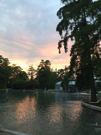 Villa Camporosso: photo1.jpg