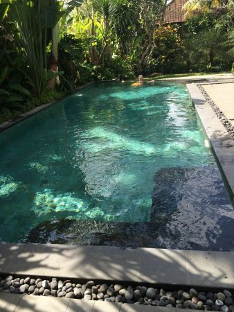 De Munut Balinese Resort: IMG-20160616-WA0020_large.jpg