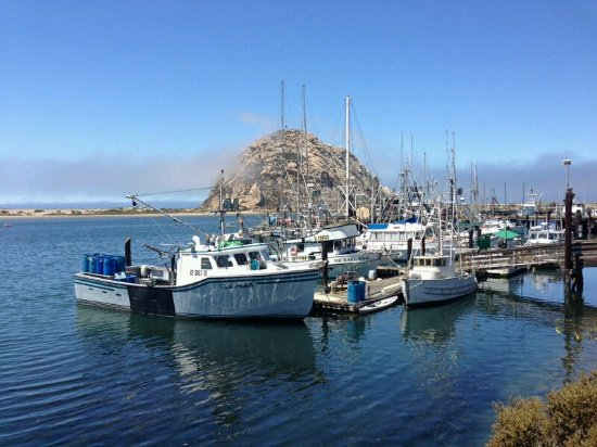 Best western tradewinds overlooking morro rock picture for Morro bay fishing