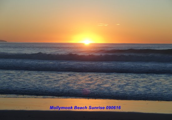 Mollymook Shores: Golden sunrise beachside