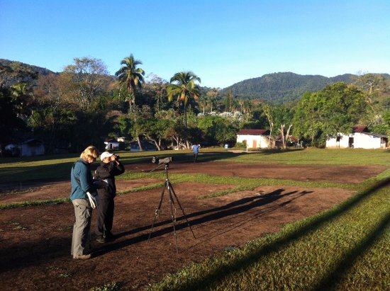 Western Highlands, Guatemala: Birding early in the morning
