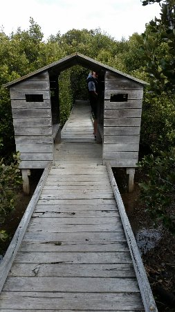 St Kilda Mangrove Trail and Interpretive Centre