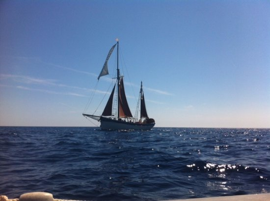 The Andrea Jensen Boat Trip: Andrea Jensen herself
