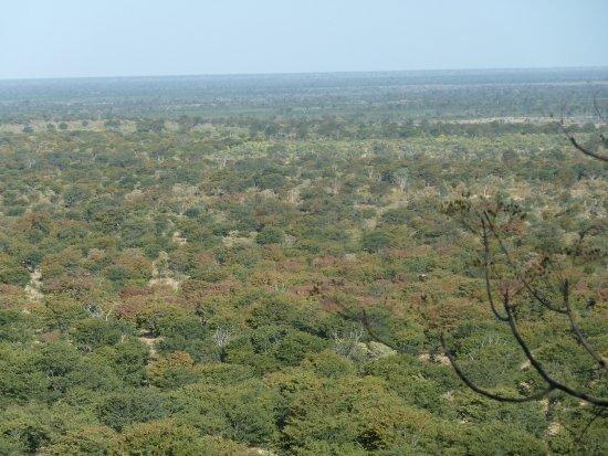 Ghoha Hills Savuti: Weiter Blick von der Terrasse des Bungalows