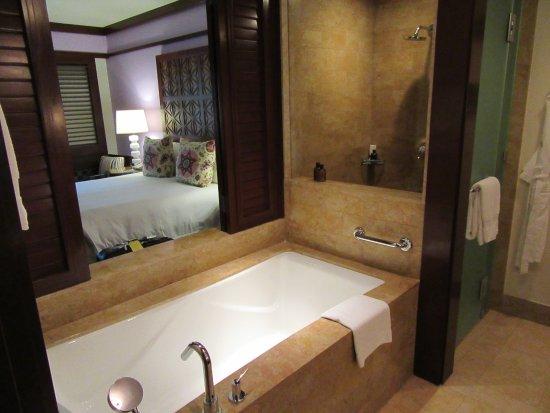 Four Seasons Resort Costa Rica at Peninsula Papagayo: Natural light, a great shower and huge tub.