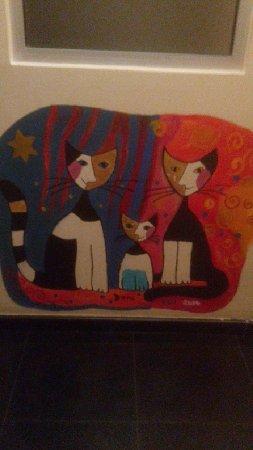 Stray Cat Hostel 사진