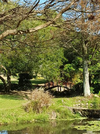 Durban North Japanese Gardens - 2019 Everything You Need