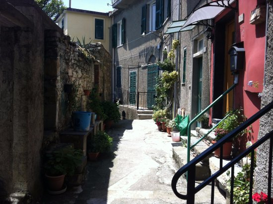 Shore Excursions in Italy - Day Tours: Corniglia quiet street in mid day