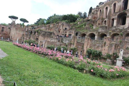 Nice The Roman Forum Garden; Very Pretty.