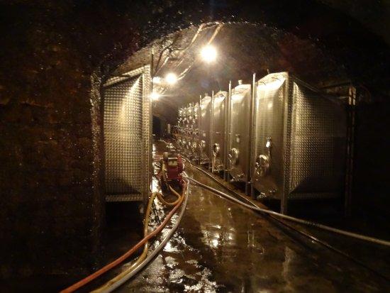 Caves St Martin : Opslag