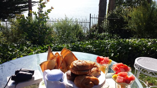 Monarch Cove Inn: Continental Breakfast on the Grounds