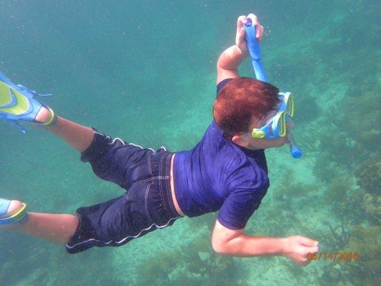 Erin Go Bragh Sailing & Snorkeling Charters: Snorkeling