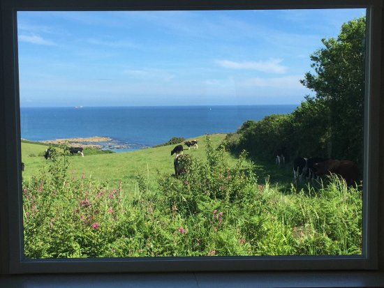 Ruan Minor, UK: Amazing views from our caravan