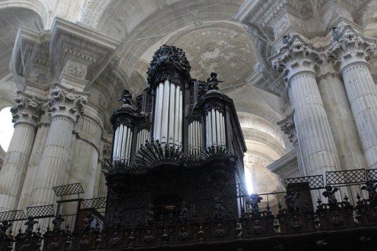 Catedral de Cádiz: Organo