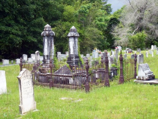 Turtle Skin Cemetery