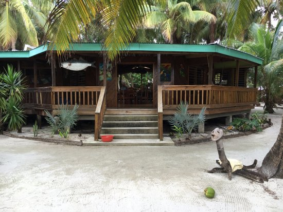 South Water Caye, Belize: Outside of Dining Area with requisite coconut. They're everywhere!