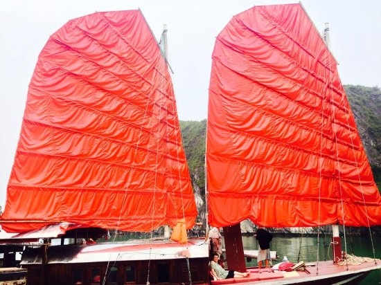 Bai Tu Long Bay: Sailing junk
