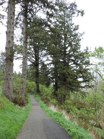 Warrenton, OR: Hike at Cape D