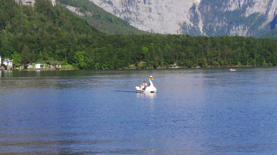 Grobming, Austria: Swan boats