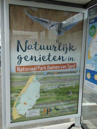 Landal Beach Park Texel: Texel