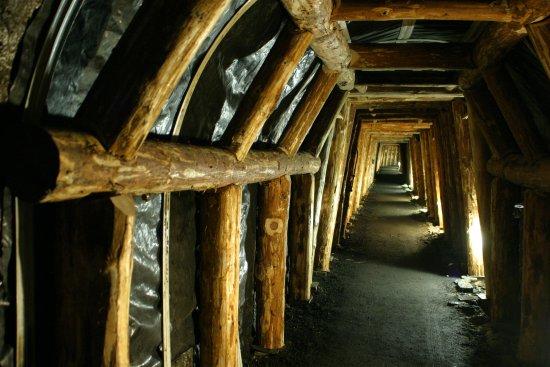 La Mine Image