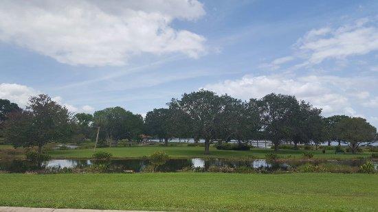 Leesburg, FL: Venetian Gardens Park