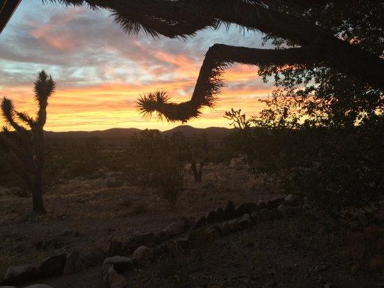 Dolan Springs, AZ: photo1.jpg
