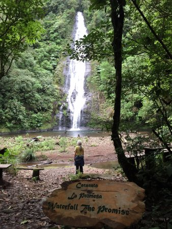 El Silencio Lodge & Spa: Waterfall just for the people who stay on site