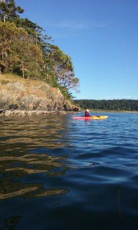 MacKaye Harbor Inn: Kayaking around the bay in front of the inn