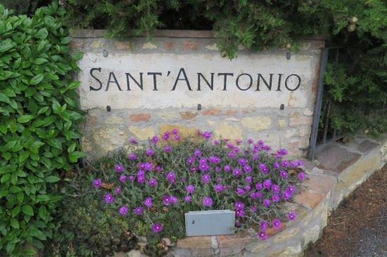Sant' Antonio張圖片