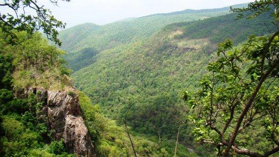 Simlipal National Park-bild