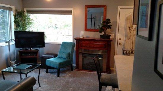 Pearson's Pond Luxury Inn and Adventure Spa : Premium Demi-suite Sitting Area