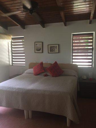 Mango Bay Resort: Mango Bay garden Villa #3