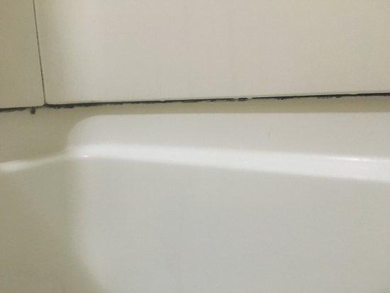Quality Inn: Black Mold In Bathroom