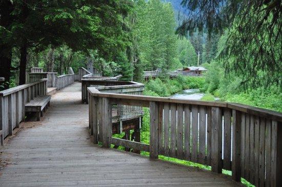 Fish Creek Wildlife Observation Site: Boardwalk