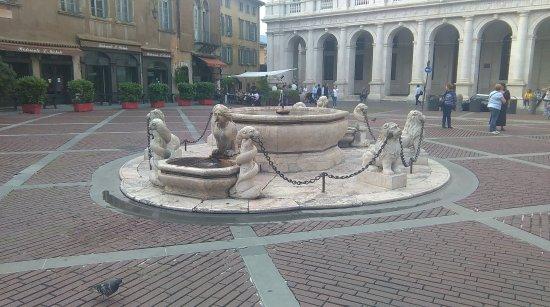 Fontana Contarini : La fontaine