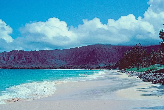 Oahu's North Shore, HI: Oahu North Shore beach...Perfect day. Surfers in the distance.