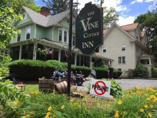 Vine Cottage Inn: The view from the street