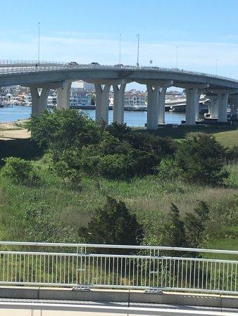 Great Egg Harbor Bay: photo2.jpg