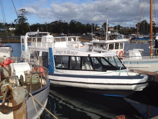 Triabunna, Australien: Spirit of Maria backup ferry during May
