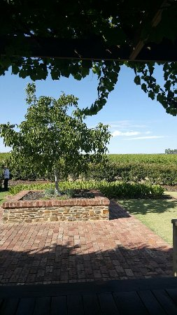 Greenock, Australien: Murray Street Vineyards