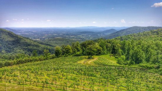 Stone Mountain Vineyards: 0618161407_HDR~2_large.jpg