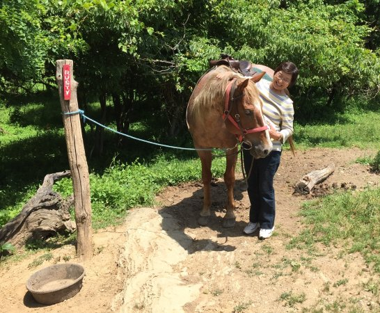 Knoxville, MD: Saying thanks and goodbye to Rusty after my trail ride