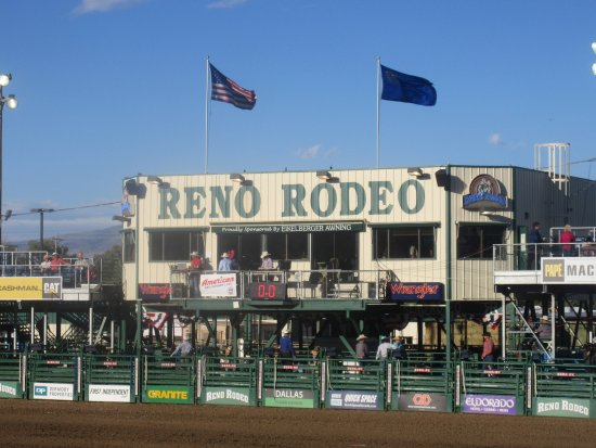 Reno Rodeo Cattle Drive: Reno Rodeo and Cattle Drive, Reno, NV (June 2016)