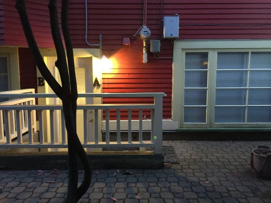 Cambie Lodge Bed & Breakfast: These are the bright lights from next door property that shine in Columbia Room C