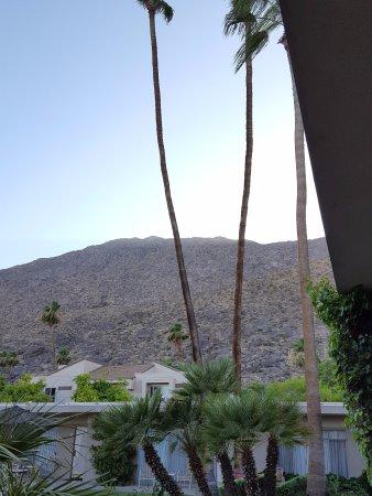 Foto Desert Hills
