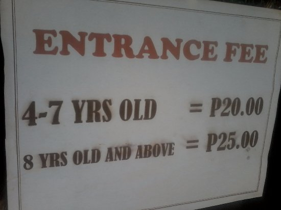 Abuyog, Filipina: Their very affordable rates.