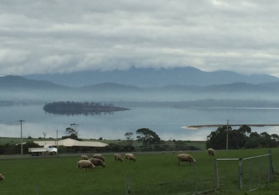 Sorell, Australia: The most beautiful view from Gin distillery I've ever seen