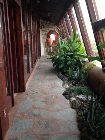 Amazing greenhouse walkway between rooms